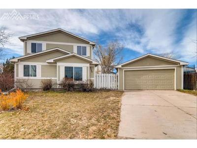 Colorado Springs Single Family Home For Sale: 2240 Allyn Way