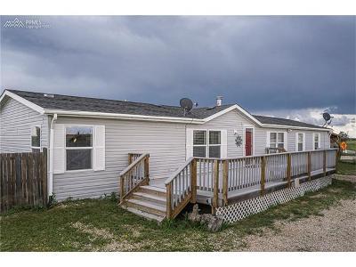 El Paso County Single Family Home For Sale: 38565 Trogilo Road