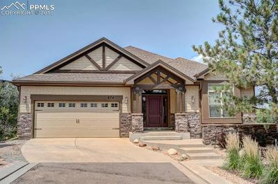 Colorado Springs Single Family Home For Sale: 874 Redemption Point