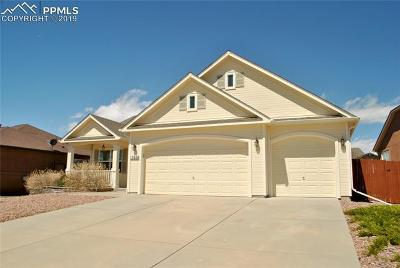 Single Family Home For Sale: 10418 Mount Evans Drive