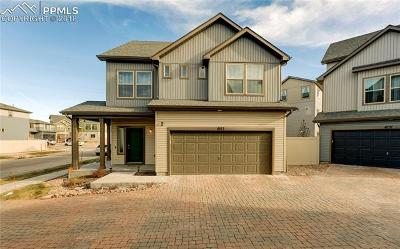 Single Family Home For Sale: 6123 Mineral Belt Drive