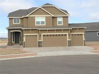 Colorado Springs Single Family Home For Sale: 8112 Barham Place