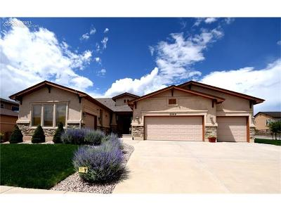 Colorado Springs Single Family Home For Sale: 5998 Leon Young Drive
