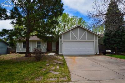 Colorado Springs Single Family Home For Sale: 223 Saddlemountain Road