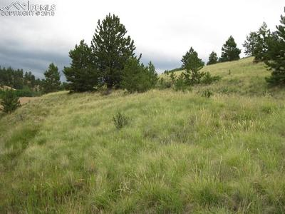 Cripple Creek Residential Lots & Land For Sale: 924 Anges Drive