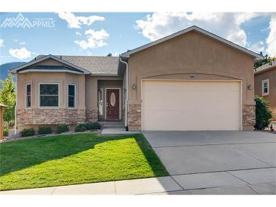 Colorado Springs Single Family Home For Sale: 7416 Centennial Glen Drive
