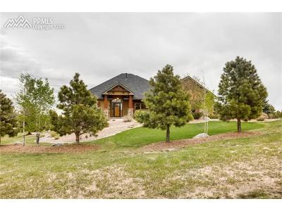 Colorado Springs Single Family Home For Sale: 17820 Pioneer Crossing