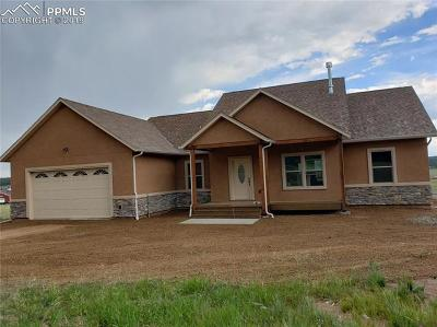Colorado Mountain Estates Single Family Home For Sale: 525 Due South Road