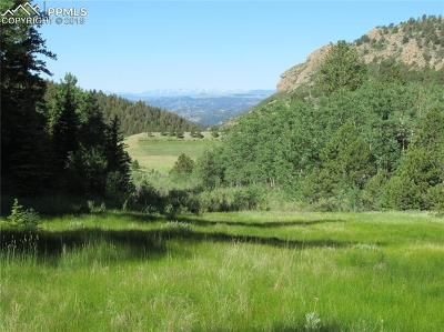 Cripple Creek Residential Lots & Land For Sale: Tbd County 1 Road