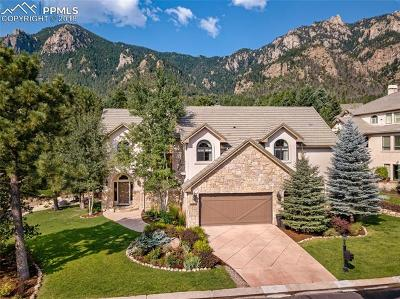 Colorado Springs Single Family Home For Sale: 869 Mont Blanc View