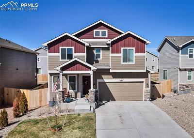 Colorado Springs Single Family Home For Sale: 6184 Decker Drive