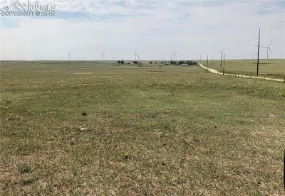 Residential Lots & Land For Sale: McQueen Road