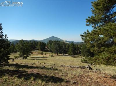 Cripple Creek Residential Lots & Land For Sale: 7070 County 1 Road