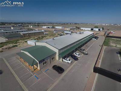 Pueblo West Commercial For Sale: 67 N Silicon Drive