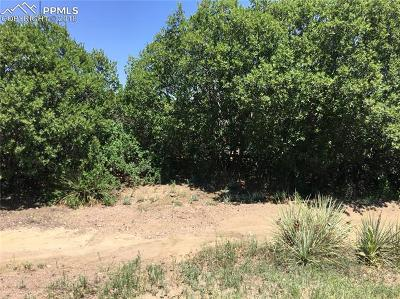 El Paso County Residential Lots & Land For Sale: 5315 Platinum Drive