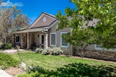 Colorado Springs Single Family Home For Sale: 2755 Brogans Bluff Drive