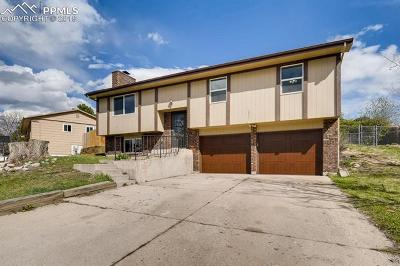 Colorado Springs Single Family Home For Sale: 4975 Bluestem Drive