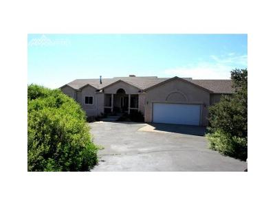 El Paso County Single Family Home For Sale: 15665 Rancho Pavo Drive