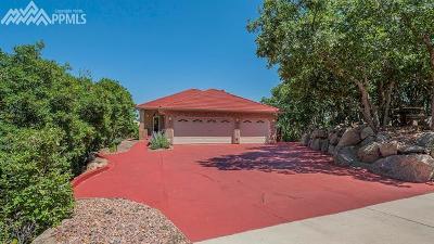 Colorado Springs Single Family Home For Sale: 65 Ellsworth Street