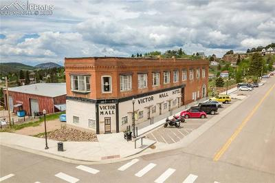 Commercial For Sale: 400 Victor Avenue