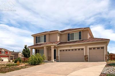 Peyton Single Family Home For Sale: 10949 Hidden Ridge Circle