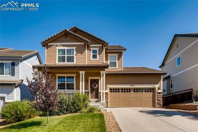Castle Rock Single Family Home For Sale: 2875 Black Canyon Way