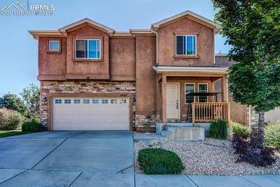Colorado Springs Single Family Home For Sale: 3897 Swainson Drive