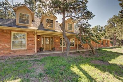 Colorado Springs Single Family Home For Sale: 15525 Herring Road