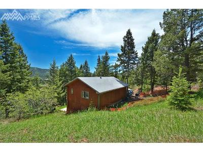 Woodland Park Single Family Home For Sale: 822 W Highway 24 Highway