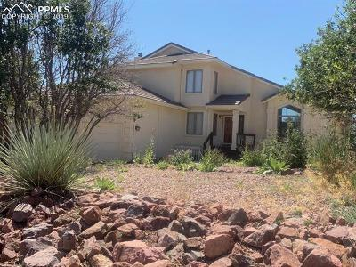 Colorado Springs Single Family Home For Sale: 1695 Summit Point Court
