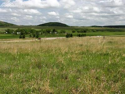 Monument Residential Lots & Land For Sale: 20357 Royal Troon Drive