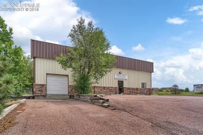 Commercial For Sale: 1025 Ford Street