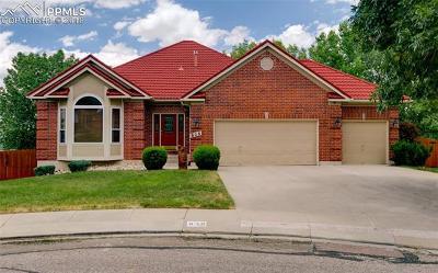 Colorado Springs Single Family Home For Sale: 835 Lilacglen Court