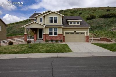 Castle Rock Single Family Home For Sale: 1011 Evening Drive