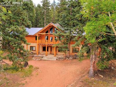 Cripple Creek Single Family Home For Sale: 12458 S Highway 67 Highway
