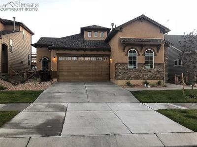 Colorado Springs Single Family Home For Sale: 7232 Rim Bluff Lane