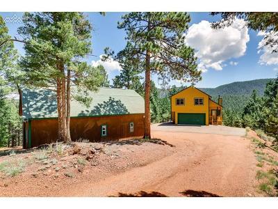 Woodland Park Single Family Home For Sale: 455 Douglas Fir Drive