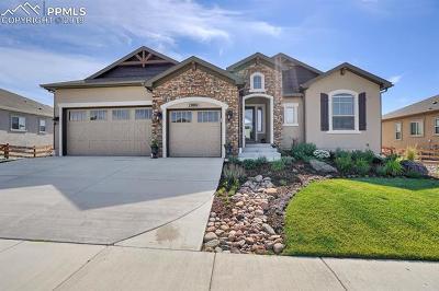 Colorado Springs Single Family Home For Sale: 13801 Rivercrest Circle