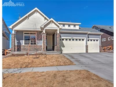 Banning Lewis Ranch Single Family Home For Sale: 7246 Horizon Wood Lane