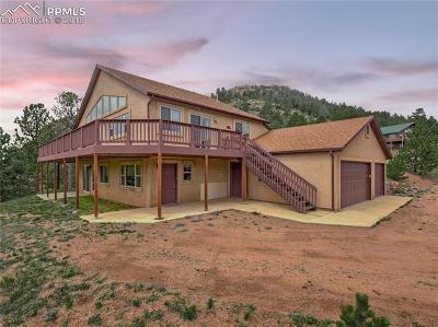Cripple Creek Single Family Home For Sale: 33 Independence Drive