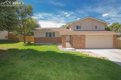 Colorado Springs Single Family Home For Sale: 2980 Inspiration Drive