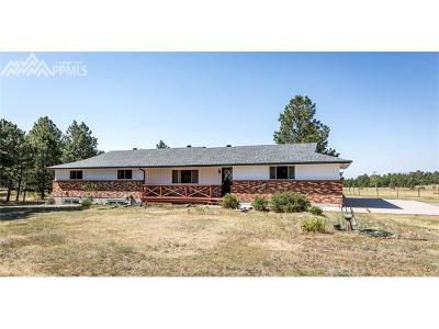 Colorado Springs Single Family Home For Sale: 10275 Burgess Road