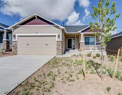 Colorado Springs Single Family Home For Sale: 10887 Hidden Brook Circle