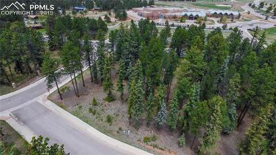 Woodland Park Residential Lots & Land For Sale: 1235 Cottontail Trail