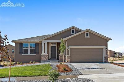 Single Family Home For Sale: 12721 Longview Park Lane