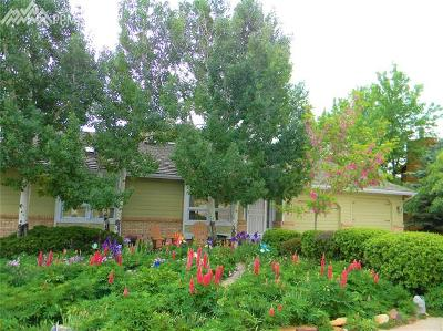 Manitou Springs Single Family Home For Sale: 4 Kreg Lane