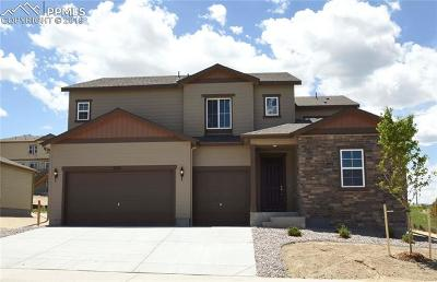 Castle Rock Single Family Home For Sale: 3275 Picketwire Way