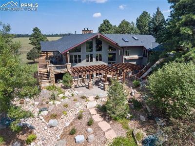 Douglas County, El Paso County, Park County, Teller County Single Family Home For Sale: 8751 E Palmer Divide Avenue