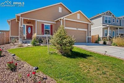 Peyton Single Family Home For Sale: 7940 Sea Oats Road