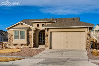 Colorado Springs Single Family Home For Sale: 6572 Mineral Belt Drive